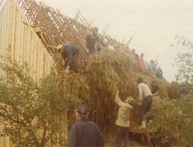 Faro 1979 thatching